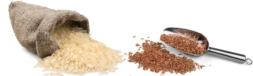 beneficios del arroz